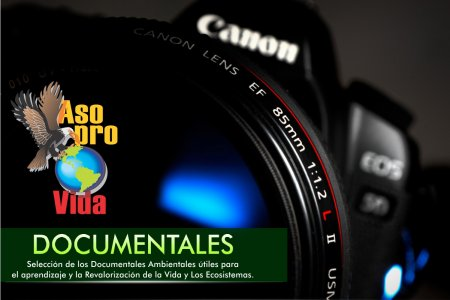 documentales-sugeridos