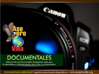 Documentales Sugeridos